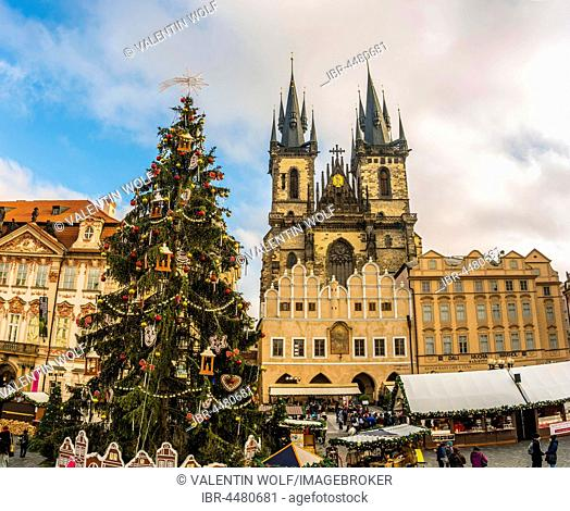 Tyn Cathedral, Christmas market on the Old Town Square, historic centre, Prague, Bohemia, Czech Republic