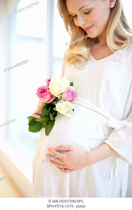 MODEL RELEASED. Pregnant woman holding posy of flowers