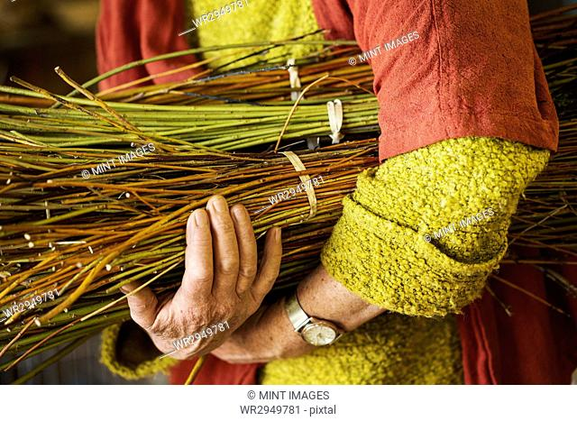 Close up of woman holding a willow bundle in a basket weaver's workshop