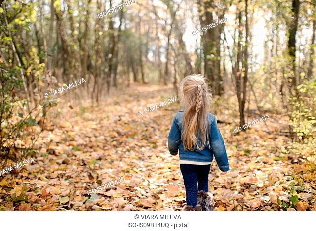 Little girl exploring forest