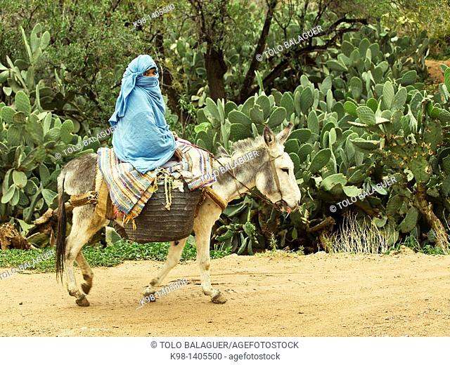 Kasbah Glaoui, Taliouine, Anti-Atlas Morocco