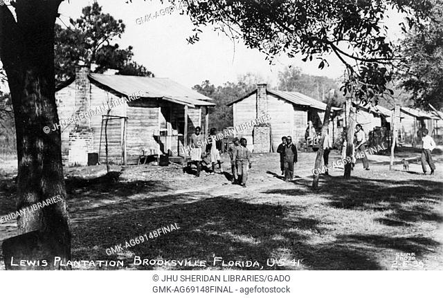 Landscape of the African American quarters on the Lewis Plantation in Brooksville, Florida, young African American men walking on the grass in front of their...