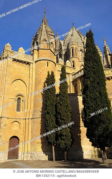 Old cathedral, 12th - 13th century, Salamanca. Castilla-Leon, Spain
