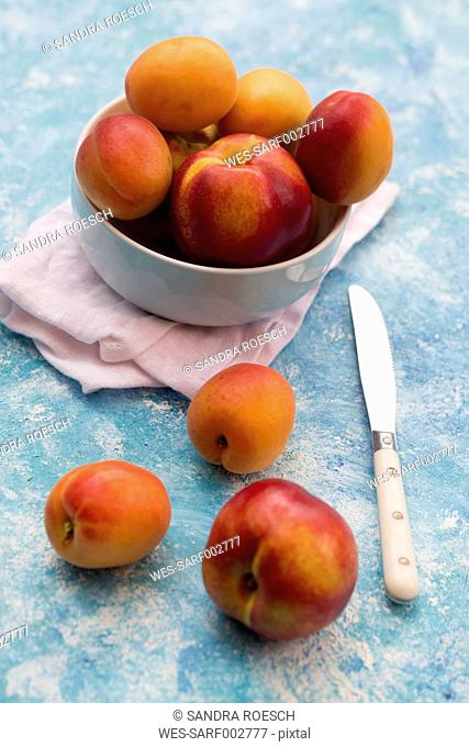 Bowl of apricots and nectarines