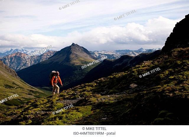 Hiker walking in grassy hills