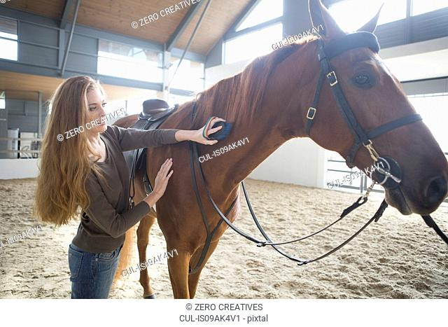Female horseback rider grooming horse in indoor paddock