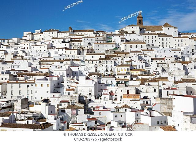 Brilliantly whitewashed houses in Alcala de los Gazules. Cadiz province, Andalusia, Spain