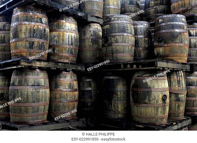 rum barrels