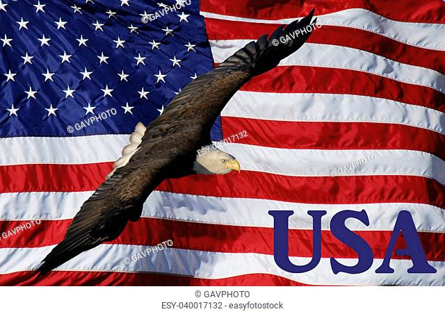 American flag with flying Bald Eagle and USA text