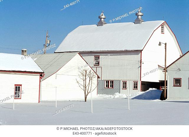 Winter scene, barns and snow. USA