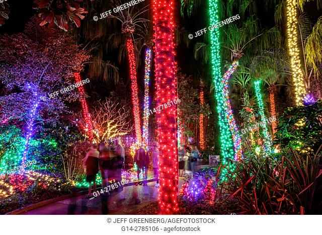 Florida, St. Petersburg, Largo, Florida Botanical Gardens, Holiday Lights, winter, Christmas, display, night