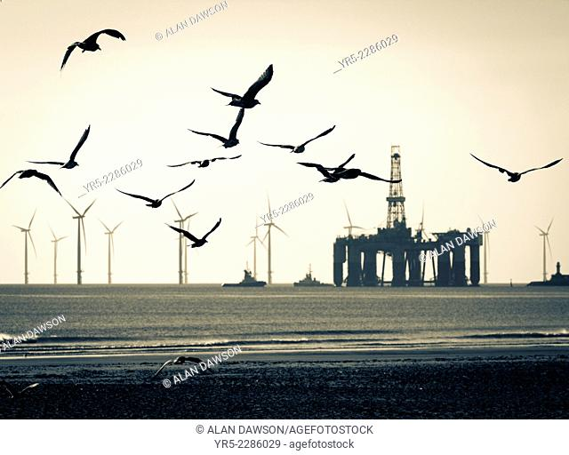 Drilling platform being towed past Seaton Carew beach and Teesside Offshore Windfarm on its way to Able UK repair yard/dry dock