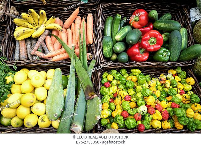 Organic vegetables in market. London, England