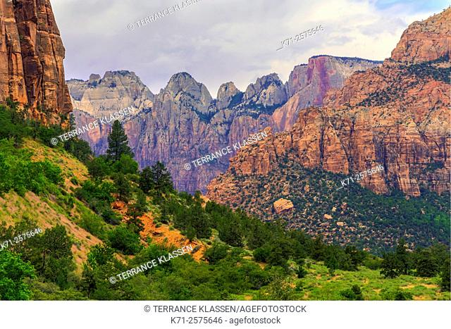 Mountains, canyons and buttes in Zion National Park, Utah, USA