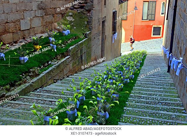 Floral representation of the staircase of the church of Sant Feliu, Temps de Flors 2018, Girona, Catalonia, Spain