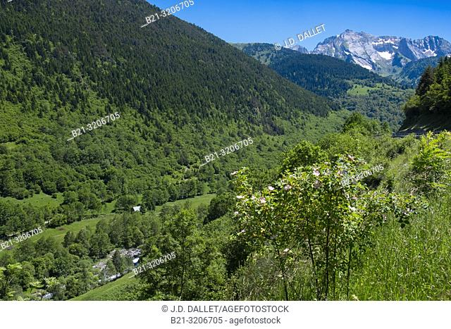 Spain, Val d'Aran, Garonne river, running down the Pyrennees mountains
