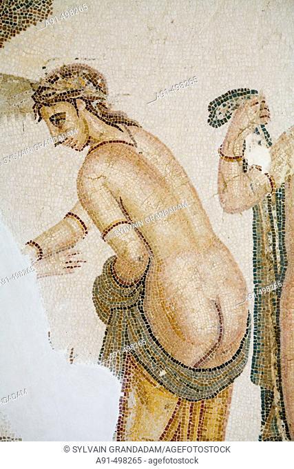 Roman mosaic. The museum. Nabeul. Tunisia