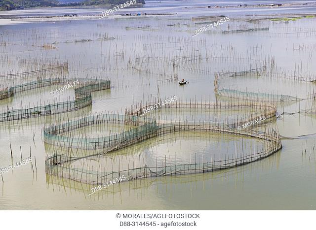 Chine, Chine du Sud, Province de Fujiang, Région de Xiapu, Cages avec filets pour l'élevage de poissons en pleine mer, Pisciculture / China, Fujiang Province