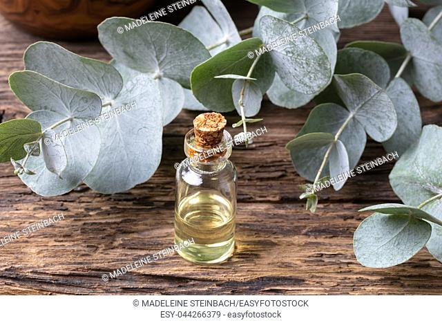 A bottle of essential oil with fresh eucalyptus leaves