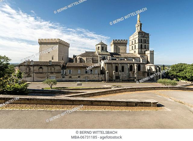 France, Provence, Vaucluse, Avignon, Cathedral of Notre Dame
