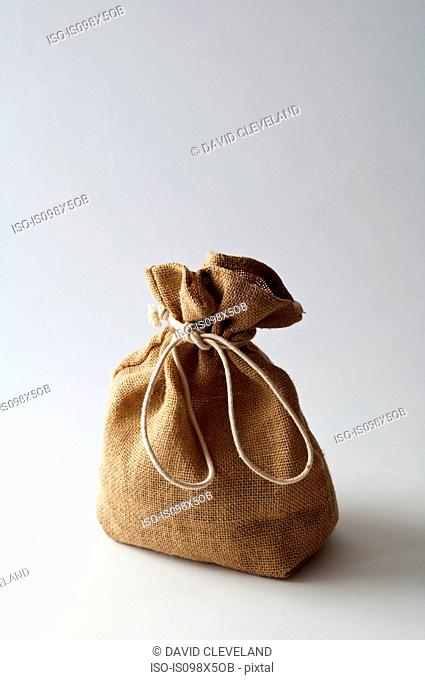 Brown sack tied with string, studio shot