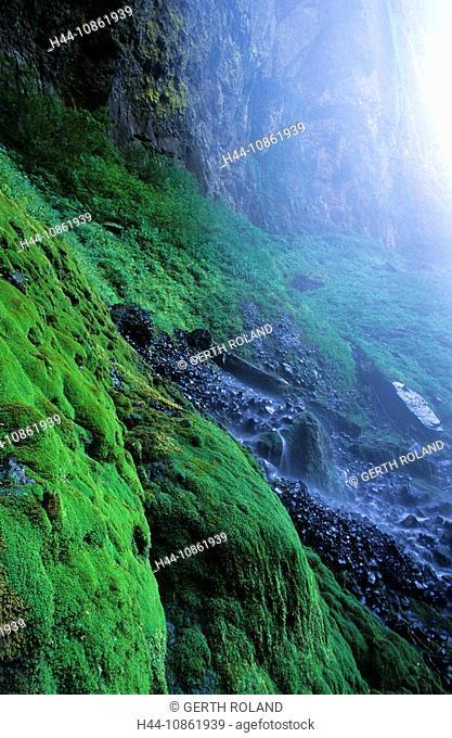 USA, Oregon, waterfall, moss, Elowah Falls, landsc