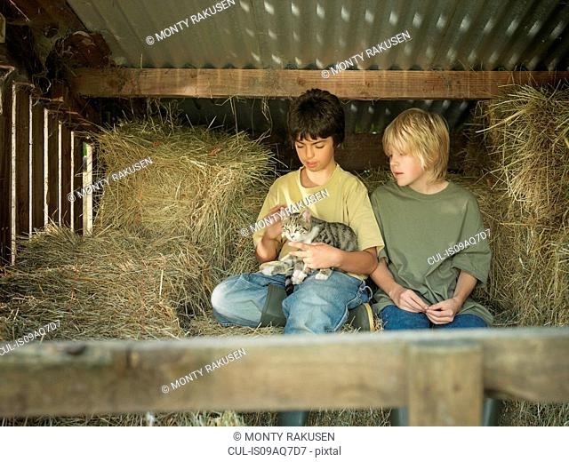 Two boys sitting with kitten in hay barn