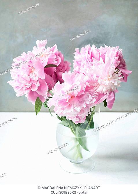 Vase of pink peonies on table