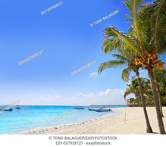 Akumal coconut palm trees beach in Riviera Maya of Mayan Mexico