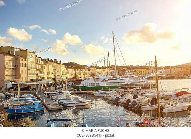 View of harbour boats and waterfront, St Tropez, Cote d'Azur, France