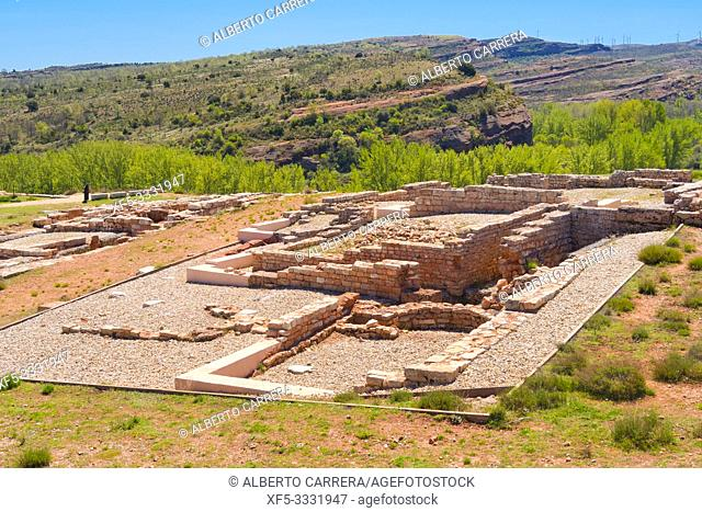 Tiermes Celtiberian-Roman Archaeological Site, Montejo de Tiermes, Soria, Castilla y León, Spain, Europe