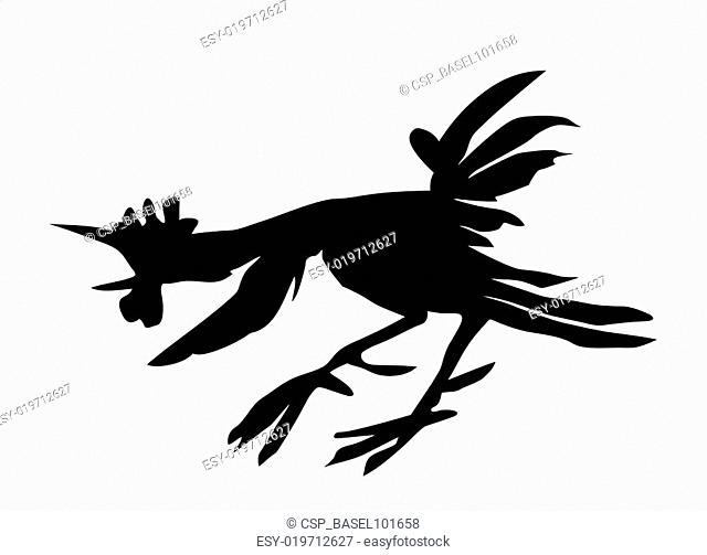 vector cartoon of the cock on white background