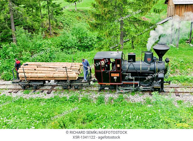 steam train, Museum of Kysuce village, Vychylovka, Slovakia