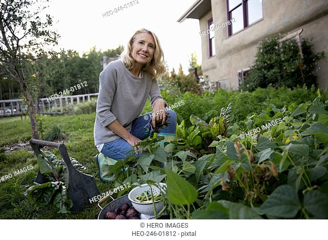 Portrait smiling woman harvesting vegetables in garden