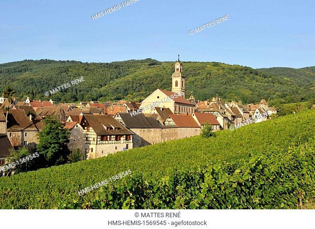 France, Haut Rhin, Alsace Wine Route, Riquewihr, labelled Les Plus Beaux Villages de France (The Most Beautiful Villages of France) and the vineyard