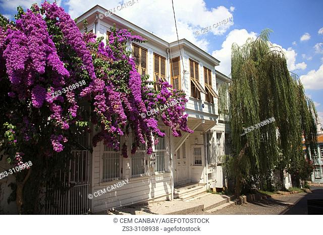 Traditional wooden house covered with flowers in Heybeliada-Halki, Prince Islands, Marmara Sea, Istanbul, Turkey, Europe