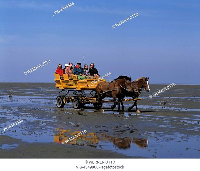 D-Cuxhaven, Seebad, Nordsee, Niedersachsen, Wattenmeer bei Ebbe, Duhner Watt, Pferdekutsche zur Insel Neuwerk, Touristen, D-Cuxhaven, seaside resort, North Sea