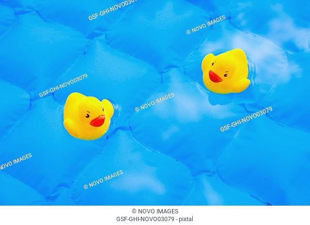 Two Yellow Rubber Ducks in Blue Wading Pool