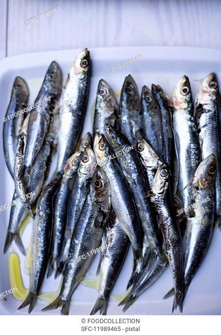 Anchovies with olive oil