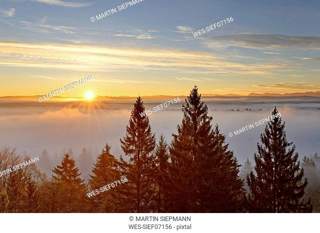 Germany, Icking, Isar Valley, sunrise over Pupplinger Au