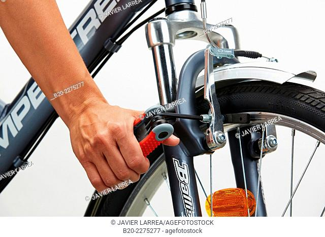 Adjusting screw with allen key, bicycle brake