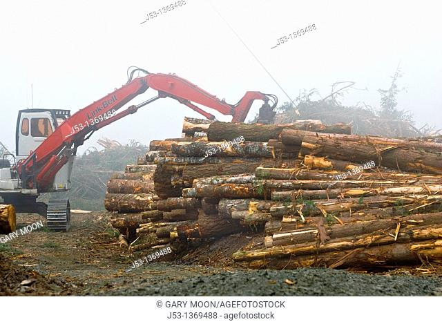 Log pile and logging machinery on foggy day, Coos County, Oregon