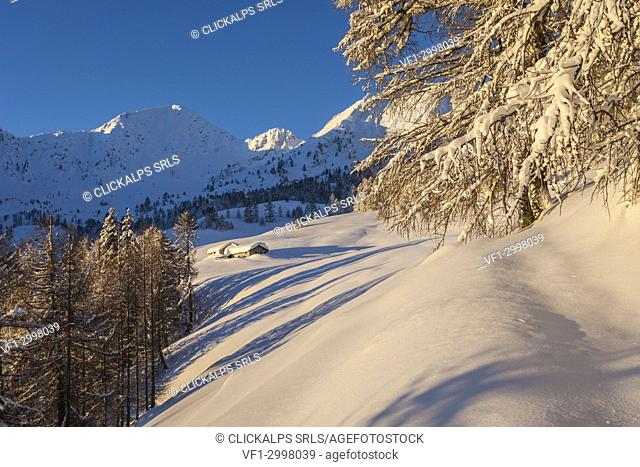 Sunrise on the snow covered Monte Olano, Gerola Valley, Sondrio province, Valtellina, Lombardy, Italy