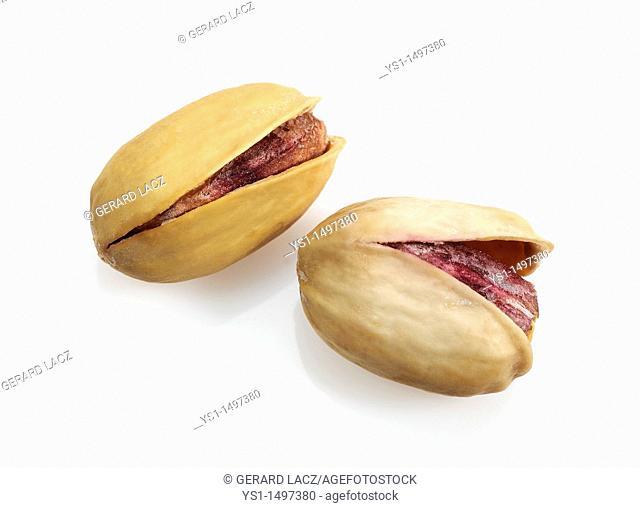 Pistachio Nuts, pistacia vera, Dry Fruits against White Background