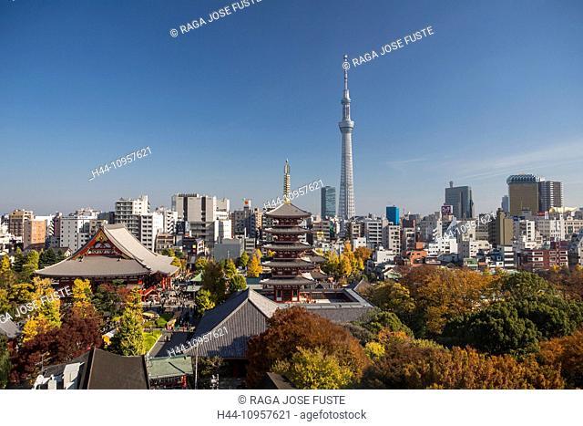 Japan, Asia, Tokyo, City, Asakusa, Autumn, Sensoji, architecture, colourful, colours, contrast, park, sky tree, skyline, building, temple, touristic, tower