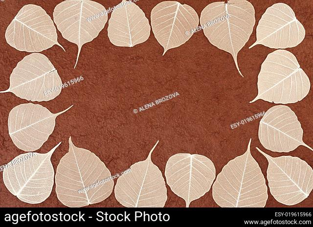 Skeletal leaves over brown handmade paper - frame