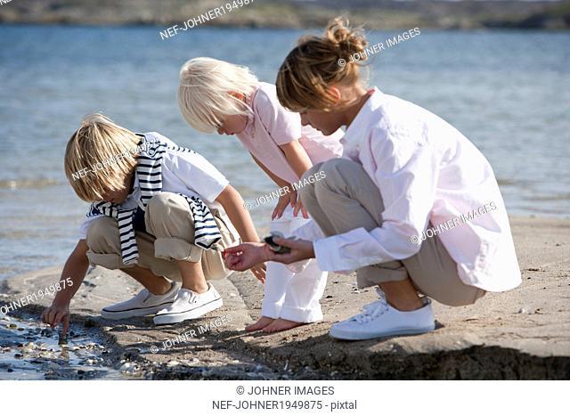 Children on beach looking for shells, Vastkusten, Sweden