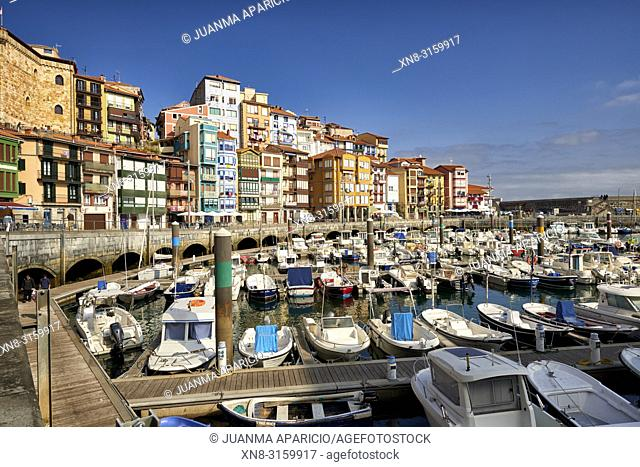 Harbor of Bermeo, Bermeo, Biscay, Basque Country, Euskadi, Euskal Herria, Spain, Europe