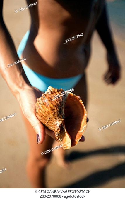 Woman in bikini holding a sea shell in her hand, Naxos, Cyclades Islands, Greek Islands, Greece, Europe