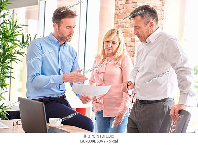 Colleagues in office discussing paperwork